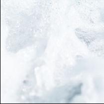 乳酸菌発酵エキス