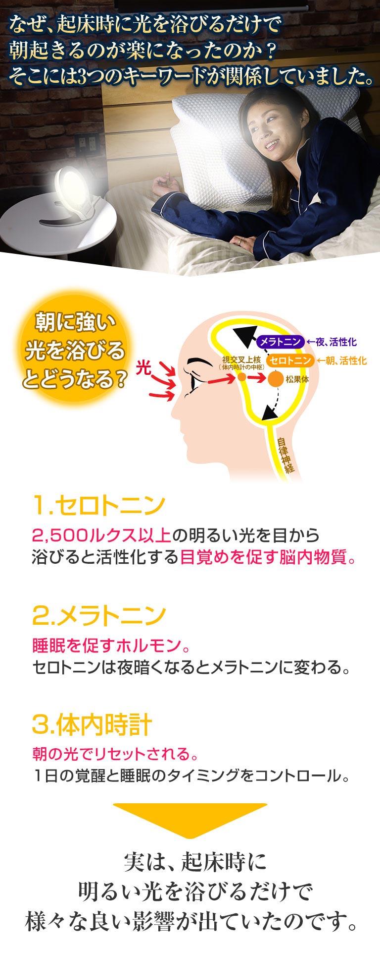 光目覚し 時計 inti4(インティ・フォー )