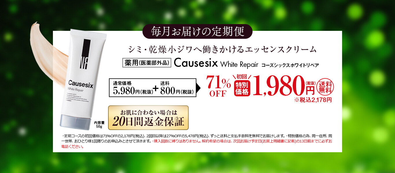 毎月お届けの定期便 特別価格 1,980円(税抜)