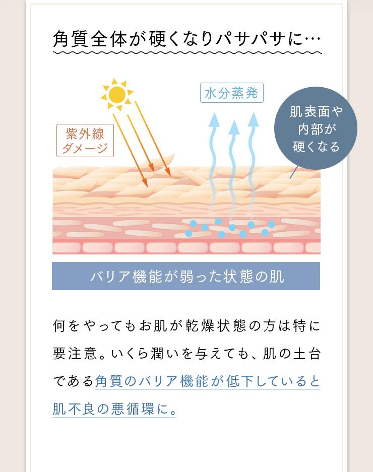 角質全体が硬くなりパサパサに…肌表面や内部が硬くなる[バリア機能が弱った状態の肌]何をやってもお肌が乾燥状態の方は特に要注意。いくら潤いを与えても、肌の土台である角質のバリア機能が低下していると肌不良の悪循環に。