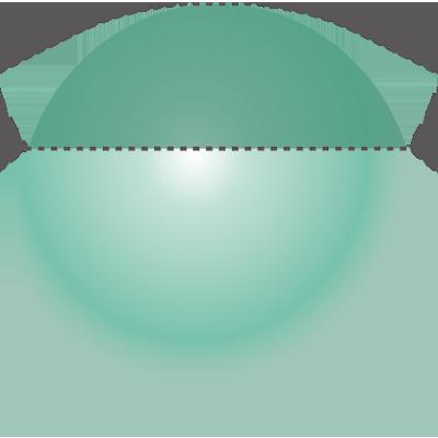 モノグルタミン酸型