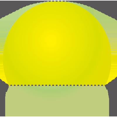 ポリグルタミン酸型