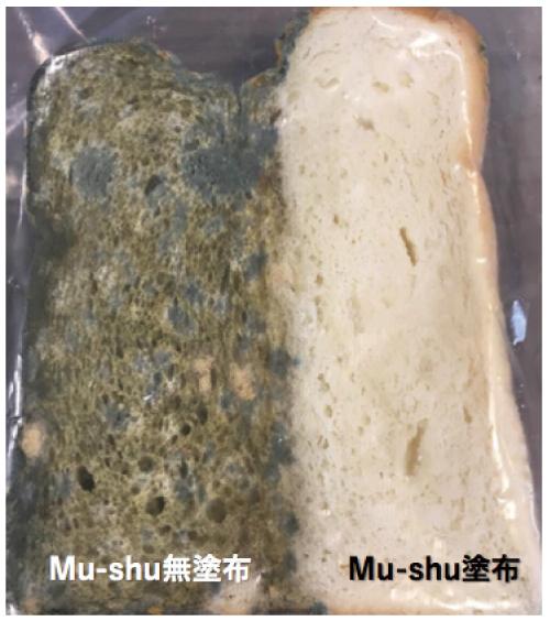 Mu-shu無塗布 / Mu-shu塗布