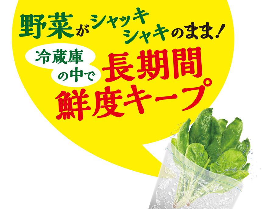 野菜がシャッキシャキのまま!冷蔵庫の中で長期間鮮度キープ