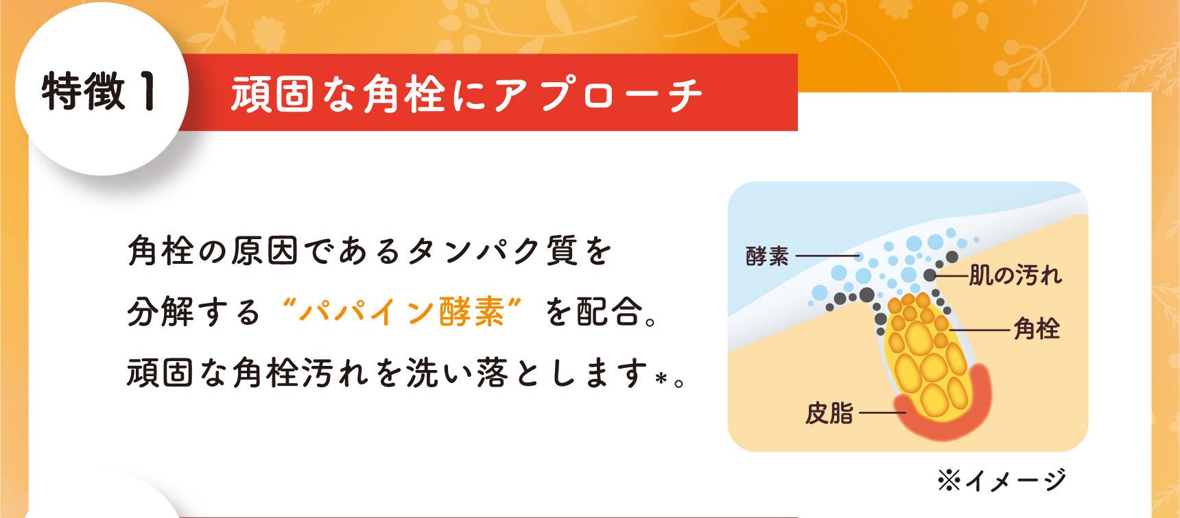 特徴1 頑固な角栓にアプローチ 角栓の原因であるタンパク質を分解する「パパイン酵素」を配合。頑固な角栓汚れを洗い落とします*。 *クレンジング効果による