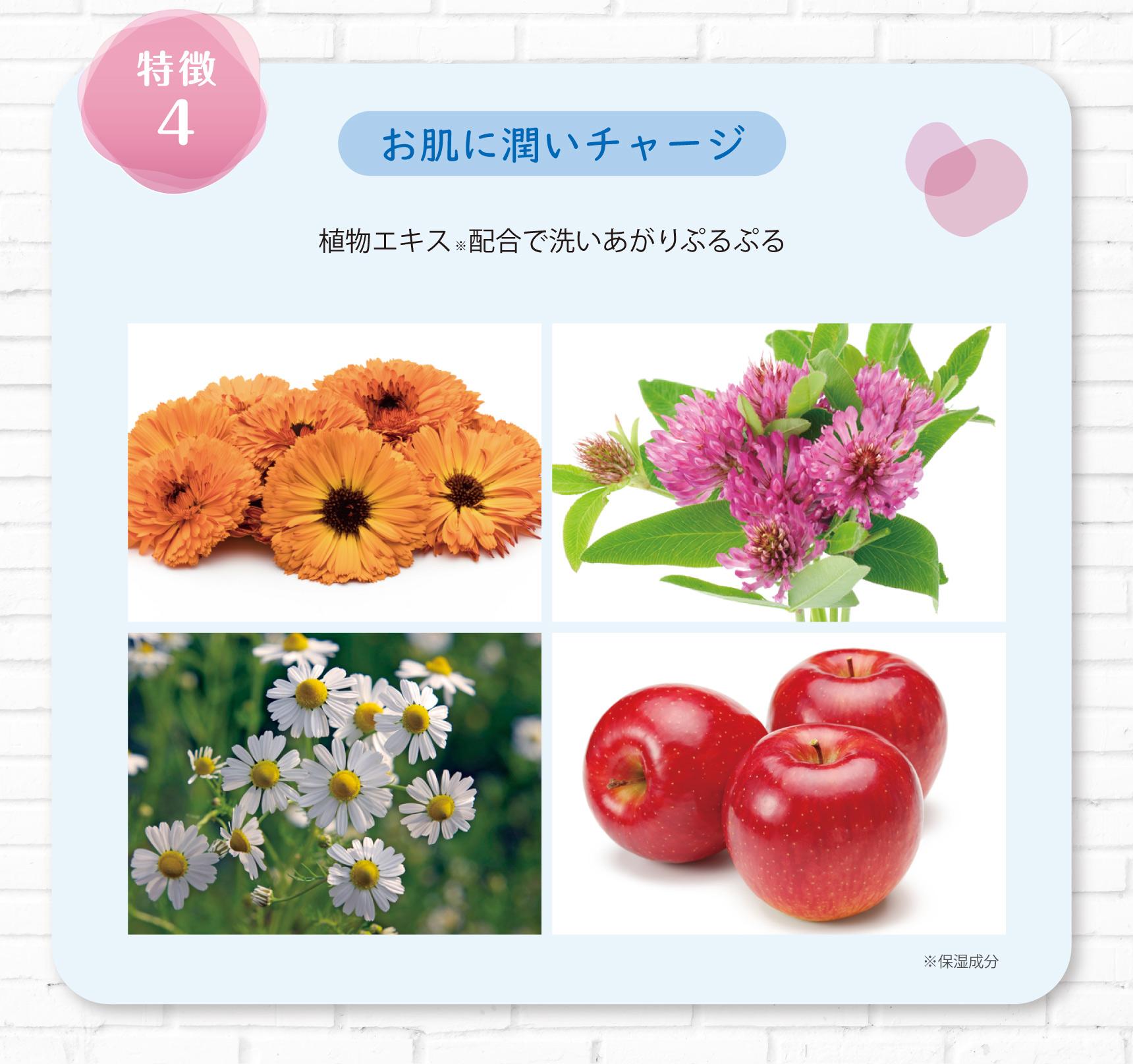特徴4 お肌に潤いチャージ 植物エキス※配合で洗いあがりぷるぷる ※保湿成分