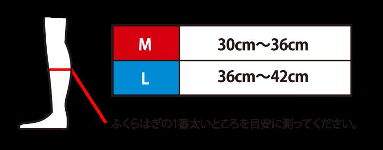 M:30cm〜36cm L:36cm〜42cm ふくらはぎの1番太いところを目安に測ってください。