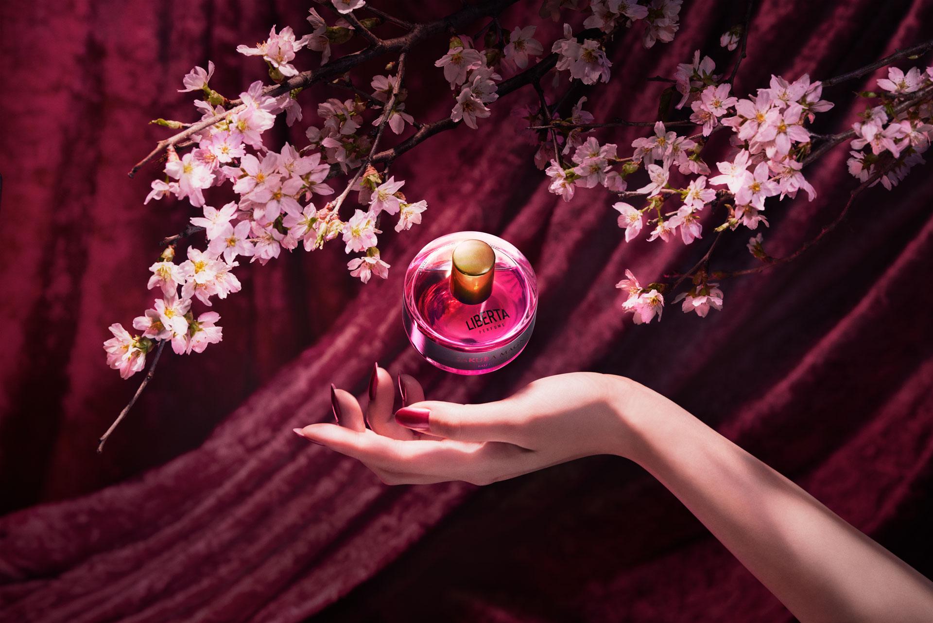 満開の桜香水サクラマグナ_サクラマグナの魅力