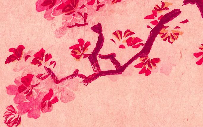 満開の桜香水サクラマグナ_ジャーナル_V11