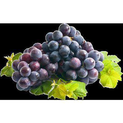 wineaccord
