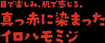 目で楽しみ、肌で感じる。真っ赤に染まったイロハモミジ