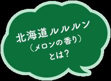 北海道ルルルン (メロンの香り) とは?