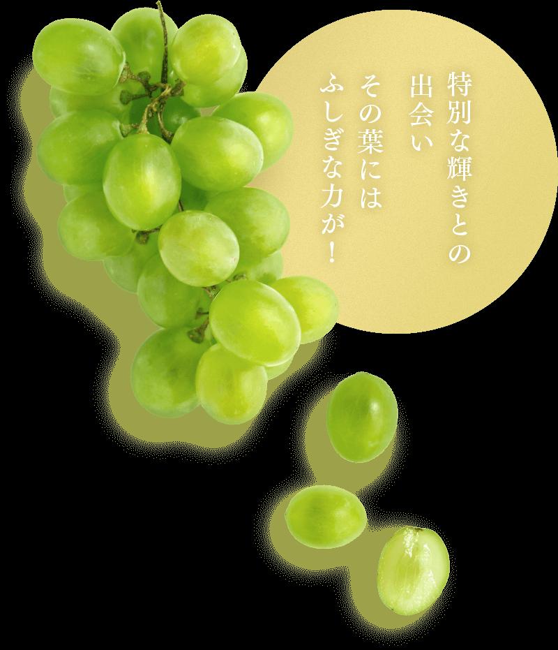 長野・山梨ルルルン シャインマスカットの香り