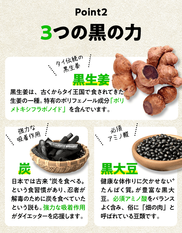 Point2 3つの黒の力