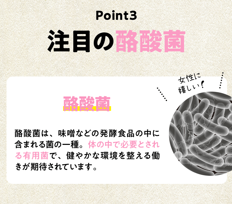 Point3 注目の酪酸菌