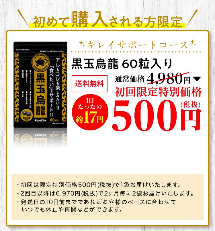 通常価格6,600円+送料200円+税+手数料+税
