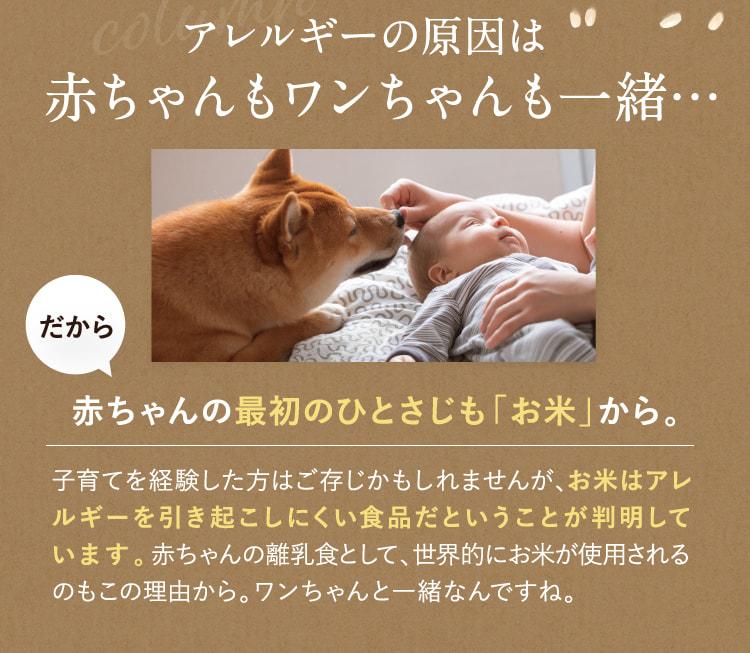 アレルギーの原因は赤ちゃんもワンちゃんも一緒…