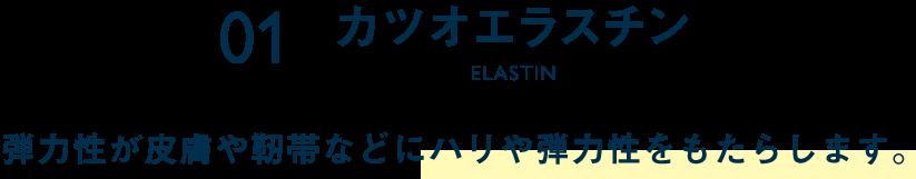 1.カツオエラスチン