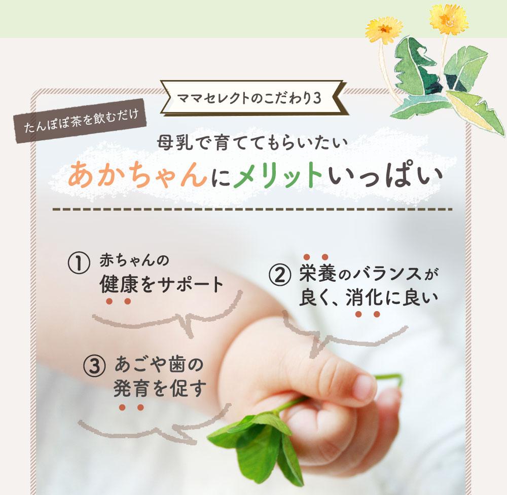 たんぽぽ茶を飲むだけ あかちゃんにメリットいっぱい 赤ちゃんの健康をサポート 栄養のバランスが良く、消化に良い