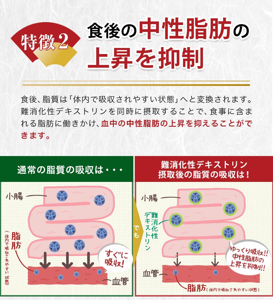 食後の中性脂肪の上昇を抑制