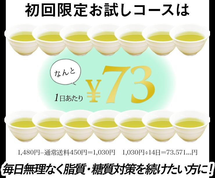 初回限定コースはなんと1日当たり73円