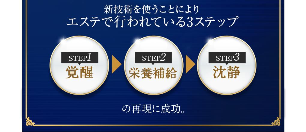 これらによってエステで行われている3ステップの再現に成功