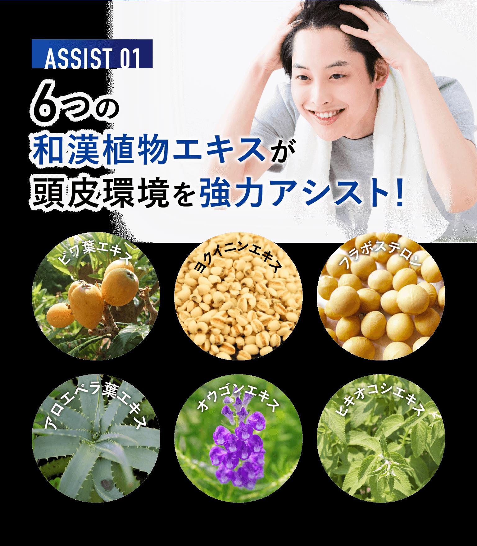 ASSIST01 6つの和漢植物エキスが頭皮環境を強力アシスト!ビワ葉エキス・ヨクイニンエキス・フラボステロン・アロエベラ葉エキス・オウゴンエキス・ヒキオコシエキス