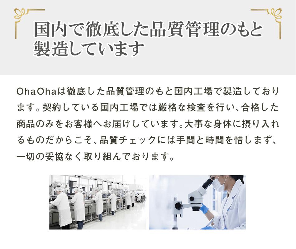 国内工場生産