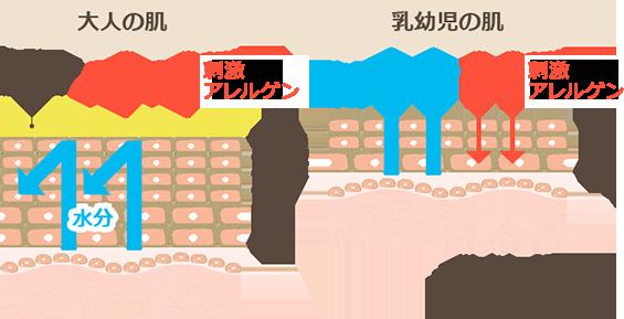 大人の肌と乳幼児の肌のバリア機能の違い