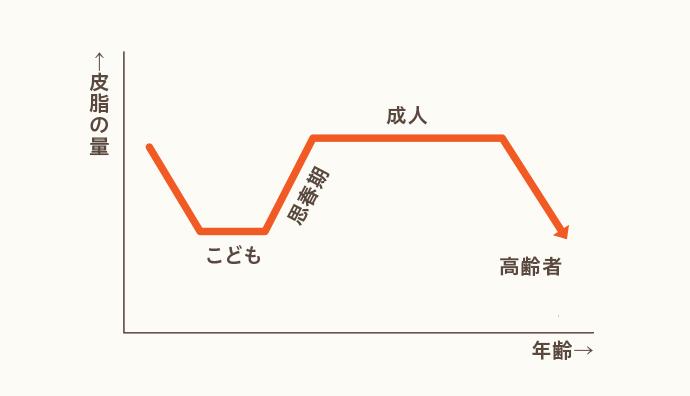 皮脂分泌量の推移イメージグラフ