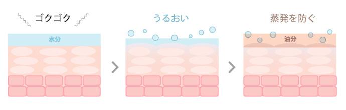 化粧水と乳液の役割イメージ