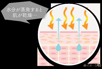 水が蒸発すると肌が乾燥…