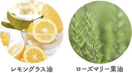 レモングラス油 ローズマリー葉油