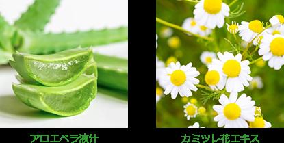 アロエベラ液汁 カミツレ花エキス