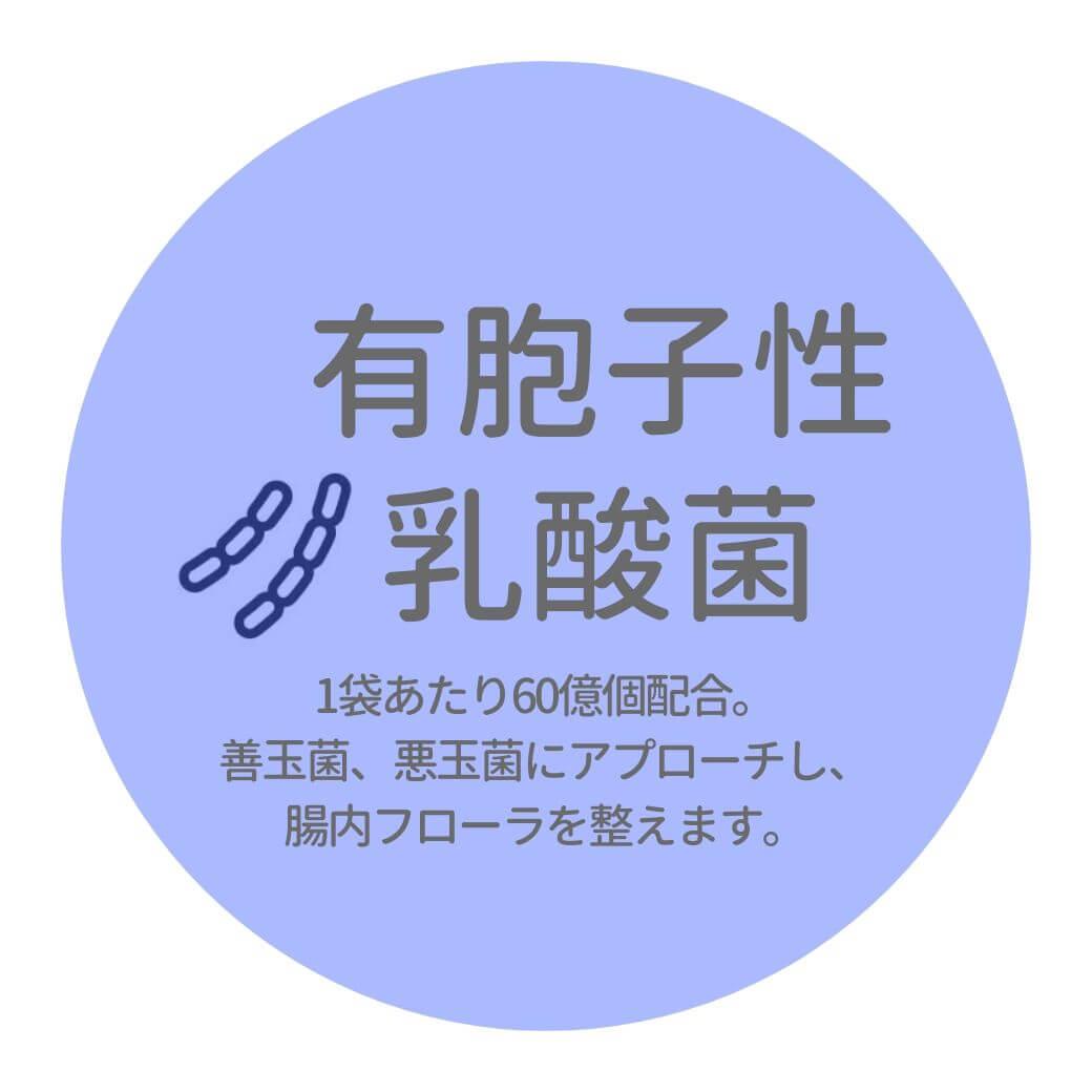 06-2_有胞子性乳酸菌