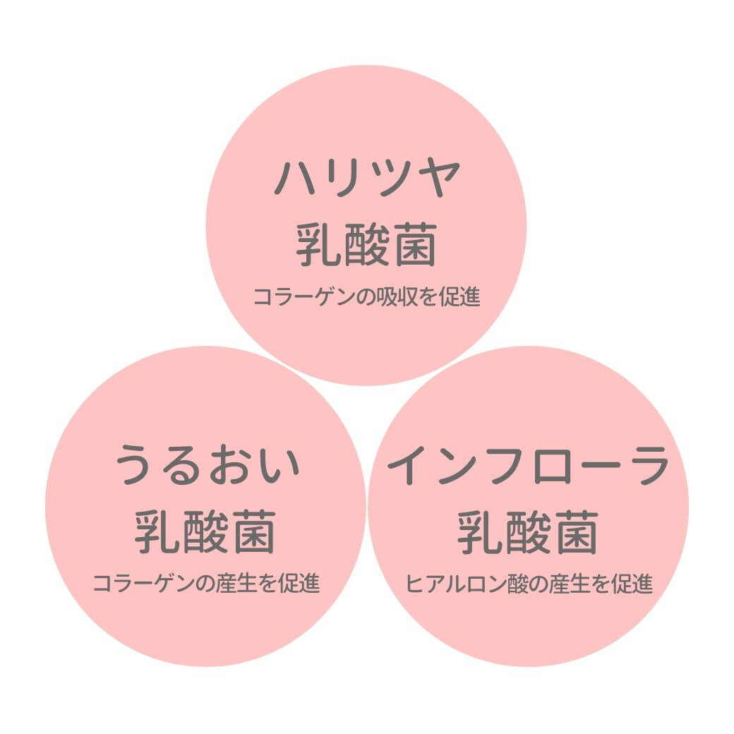 06-3_美容乳酸菌