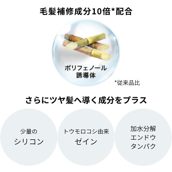19-3_シンスボーテ リニューアル