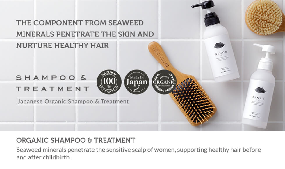 Organic Shampoo Treatment