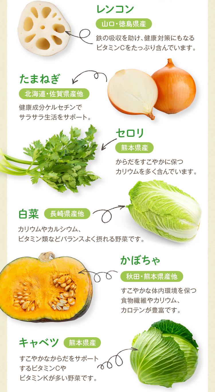 れんこん・たまねぎ・セロリ・白菜・かぼちゃ・キャベツ