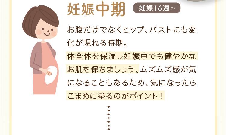 妊娠中期 妊娠16週~ お腹だけでなくヒップ、バストにも変化が現れる時期。 体全体を保湿し皮膚が引っ張られても耐えられるお肌を保ちましょう。かゆみを感じることもあるため、気になったらこまめに塗るのがポイント!