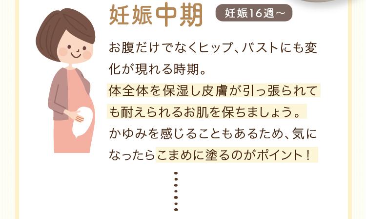 妊娠中期 妊娠16週~ お腹だけでなくヒップ、バストにも変化が現れる時期。体全体を保湿し皮膚が引っ張られても耐えられるお肌を保ちましょう。かゆみを感じることもあるため、気になったらこまめに塗るのがポイント!
