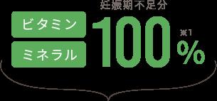 ビタミン・ミネラル100%