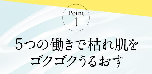 Point.1 5つの働きで枯れ肌をゴクゴクうるおす