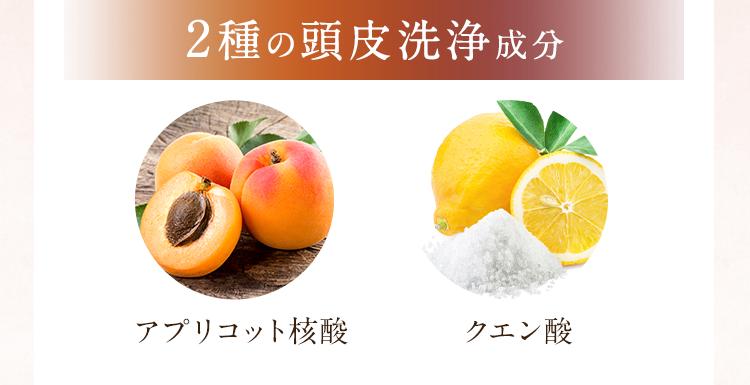 2種の頭皮洗浄成分
