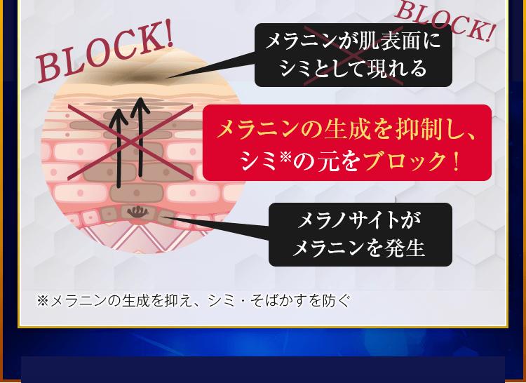 メラニンの生成を抑制し、シミ※の元をブロック!
