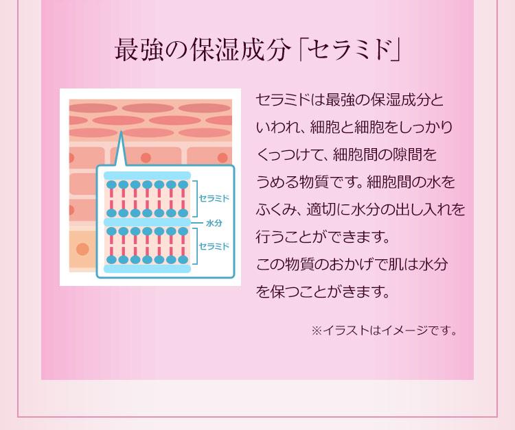 最強の保湿成分「セラミド」…セラミドは最強の保湿成分といわれ、細胞と細胞をしっかりくっつけて、細胞間の隙間をうめる物質です。