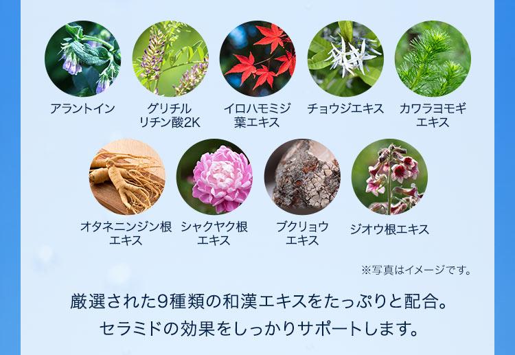 厳選された9種類の和漢エキスをたっぷりと配合。セラミドの効果をしっかりサポートします。