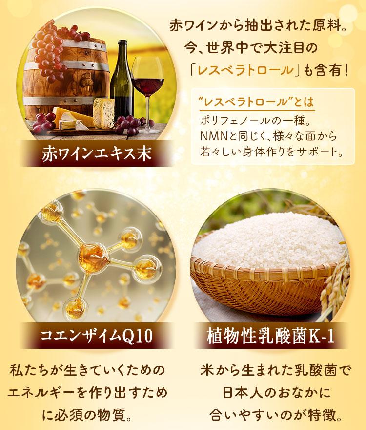 赤ワインエキス末・コエンザイムQ10・植物性乳酸菌