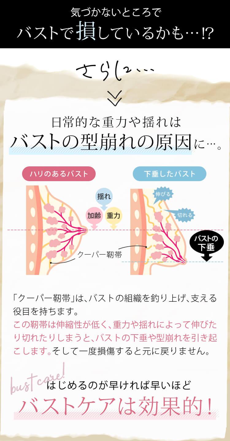 気づかないところでバストで損しているかも…!? さらに… 日常的な重力や揺れはバストの型崩れの原因に…。 ハリのあるバスト 下垂したバスト 「クーパー靭帯」は、バストの組織を釣り上げ、⽀える役⽬を持ちます。 この靭帯は伸縮性が低く、重⼒や揺れによって伸びたり切れたりしまうと、バストの下垂や型崩れを引き起こします。そして⼀度損傷すると元に戻りません。 はじめるのが早ければ早いほどバストケアは効果的!