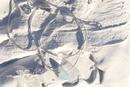 エスパシオ スネークチョーカー #325